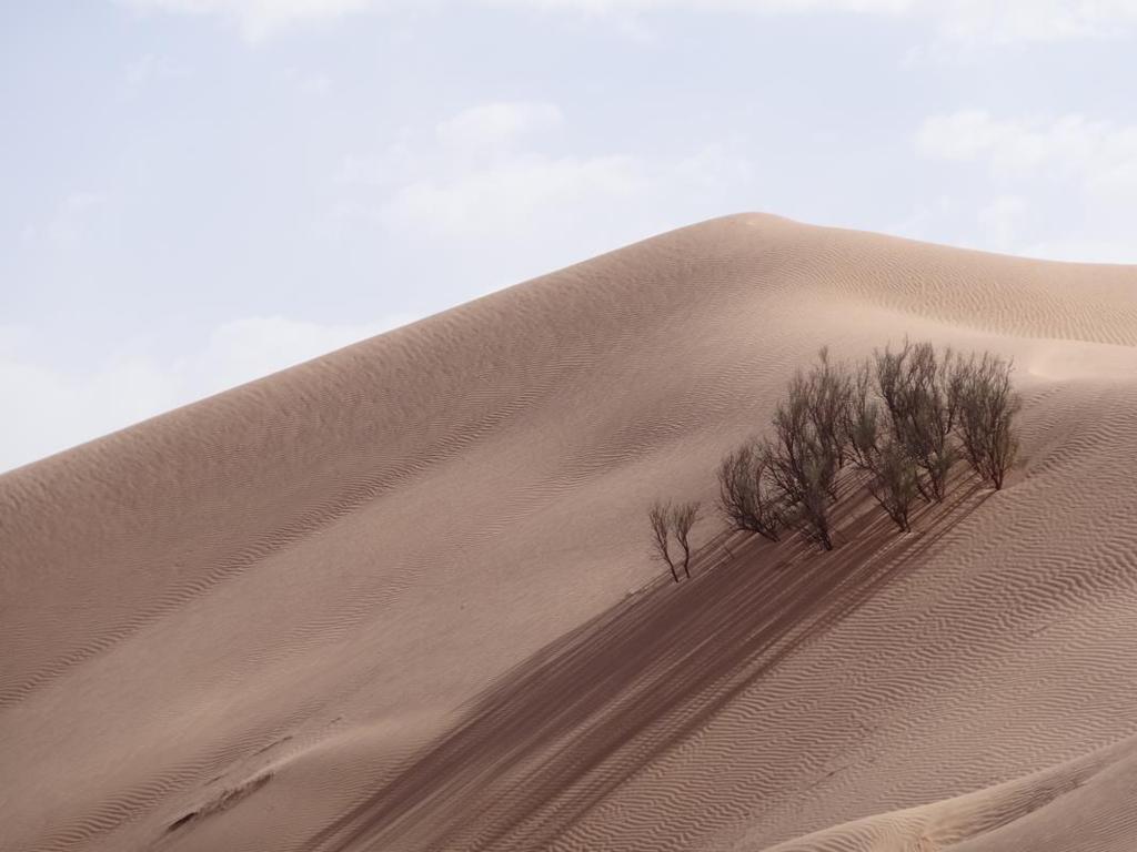 TUNISIA-26