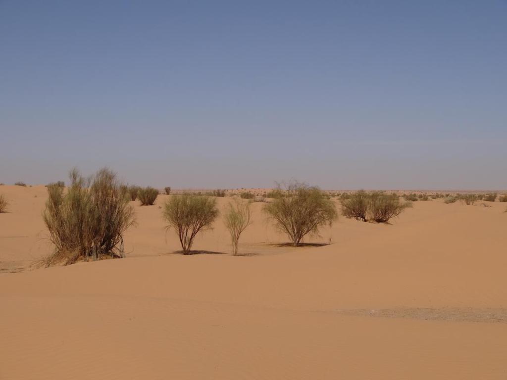 TUNISIA-28