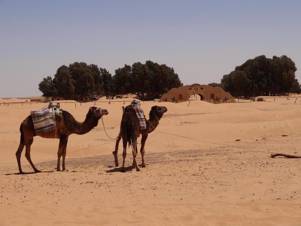 TUNISIA-32